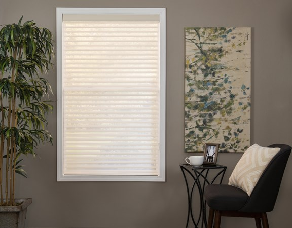 Sheer Shade in the deluxe light filtering color Westport Ecru